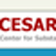 Center for Substance Abuse Research (CESAR)
